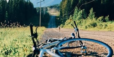 Μεταφορά ποδηλάτου